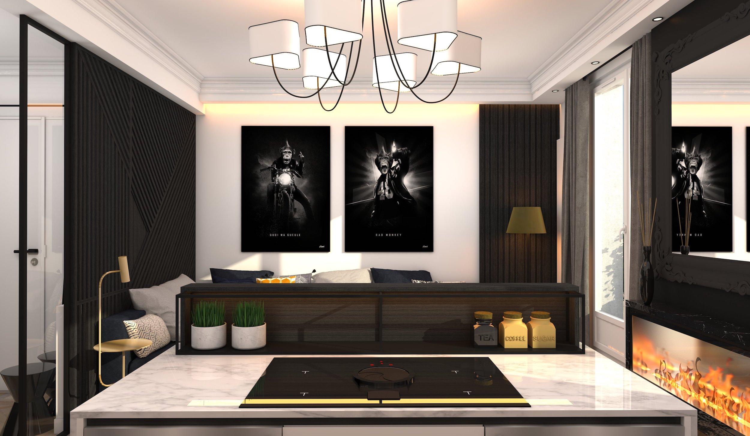 Renovation-appartement-paris-75-large-2
